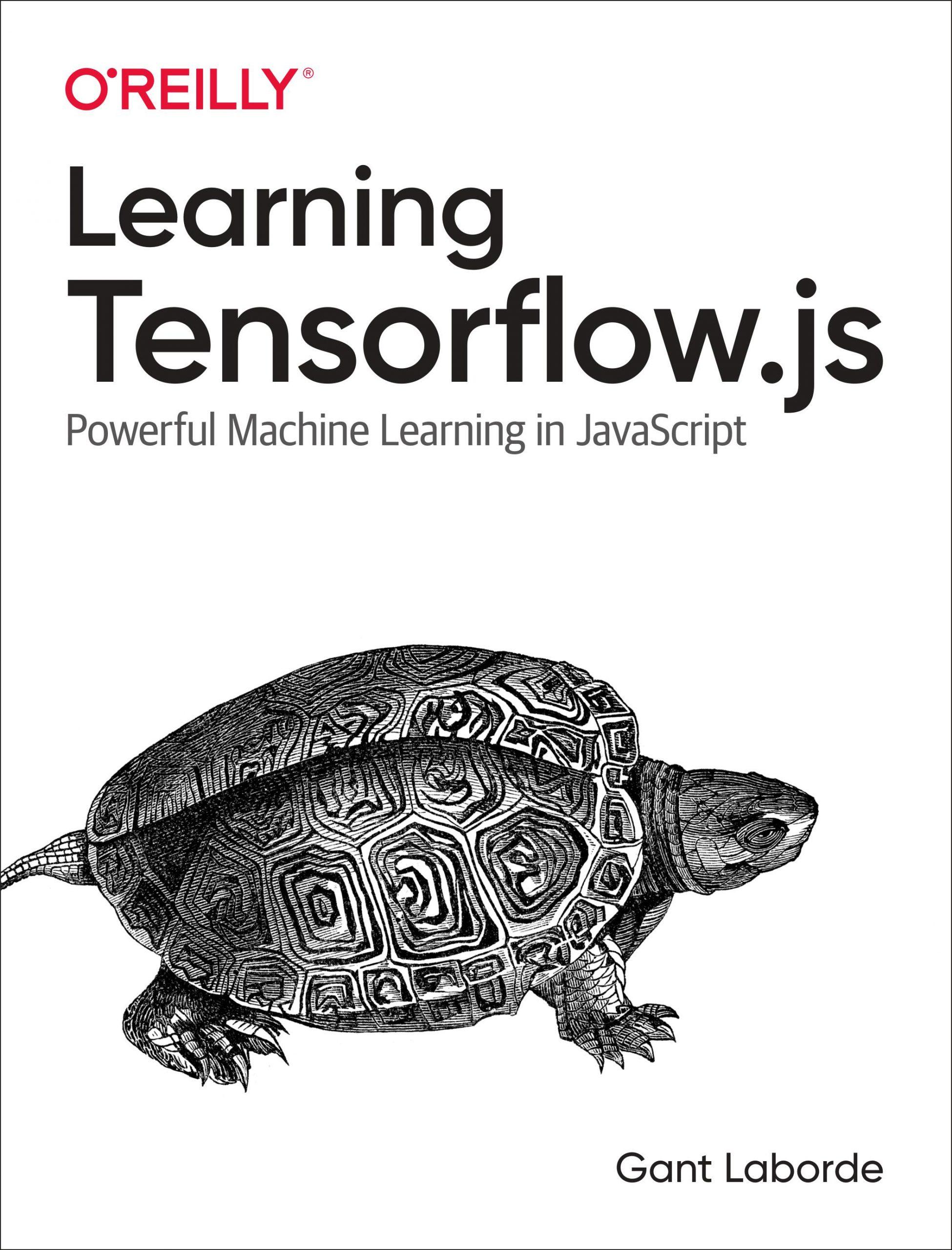 Learning TensorFlow.js book